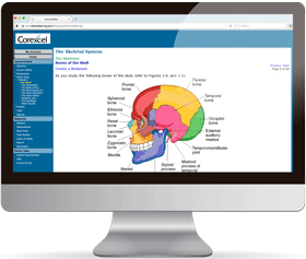 Online Medical Terminology Course Screen Shot